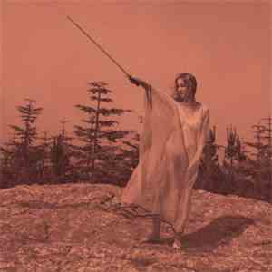 Unknown Mortal Orchestra - II download